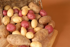 Potatoes are a highly nutritious food.