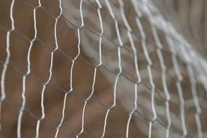 Install a wire mesh fence in your yard.
