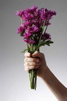 Some extra care may prolong the life of fresh cut flowers.