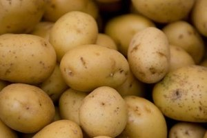 Gold potatoes take their name from the golden-like appearance.