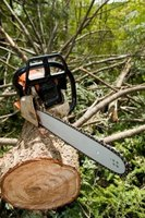 Nearly all gas chainsaws require a gasoline and oil mixture for their fuel.
