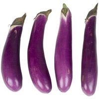 Hansel is a hybrid Asian eggplant with small, slender fruit.