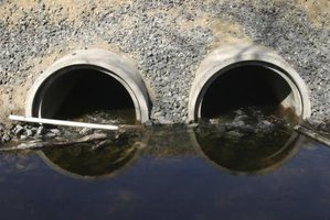 Water-borne diseases are typically caused by poor public sanitation