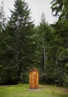 An outhouse toilet may hide a spider.