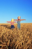 Scarecrows can be made to look as plain or decorative as you want them.
