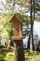 Bird feeder poles provide a stable environment where birds can feed.