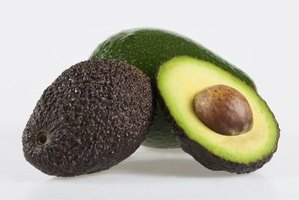 Some large avocados varieties can weigh up to 18 oz.