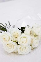 White roses provide a necessary ingredient in creating rainbow roses.