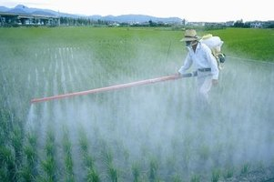 Many agrochemicals are toxic to humans.