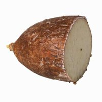 Yucca roots are potato-like tubers with brown skin and white flesh.