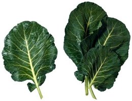 Dark green leafy collard greens are rich in antioxidants.