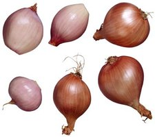 Shallots have a flavor sweeter than most onions.