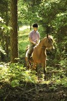 Casual trail riding has different requirements and challenges than rugged riding.