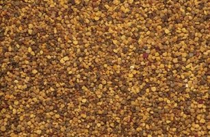 Tiny mustard seeds pack a powerful flavor punch.