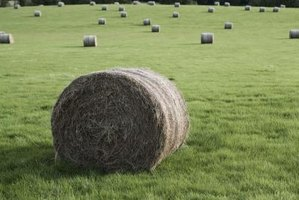 Round bales can vary greatly in size. A scale is needed to accurately weigh them.