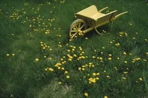 Weed sprayers make quick work of killing weeds in your yard.