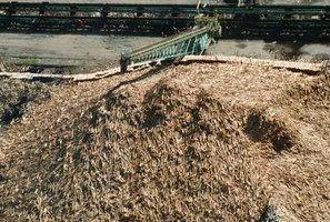 Mulch helps hold water in the soil.