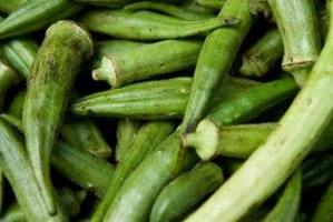 Okra originated near the Horn of Africa and was brought to the Americas by African slaves.