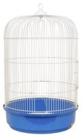 Keep a bird cage clean to get rid of a bird smell.