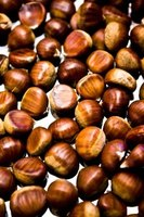 Cooking and peeling chestnuts gets easier with practice.
