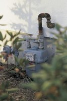 Camouflage unsightly utility meters with plants to create a more appealing landscape.