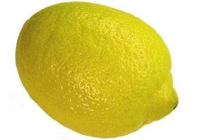 Seedless lemons can be difficult to find.
