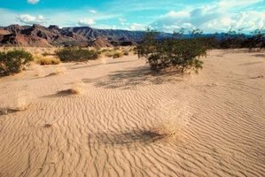 Most of the California desert region is dry and barren.