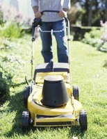 The price of lawn mowing varies.