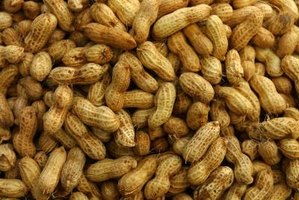 Peanuts trigger allergic reactions in some people.