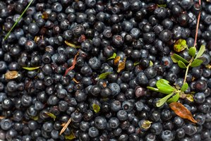 Rich in astaxanthin, blueberries are a great source of antioxidants.
