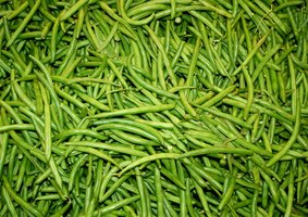 Planting disease-resistant green bean seeds helps prevent fungi.
