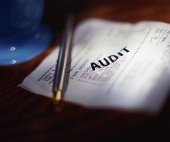 Audits double-check the work of accountants in a business.