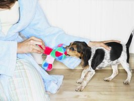 Homemade fleece dog toys are an inexpensive alternative to commercially-produced toys.