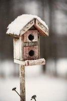 Old cedar fence slats can be repurposed as birdhouses.