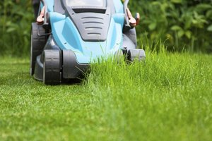 A homeowner mows their lawn.