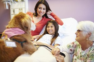 Therapy dogs who visit hospitals and health care facilities have a higher risk of carrying MRSA.