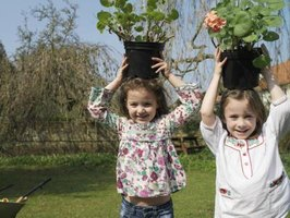 Two girls carrying pots of flowers on their heads in the backyard.
