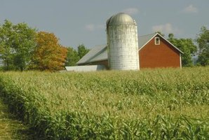 On farms, silos are used to store grain.