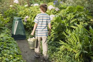 Kitchen scraps can be added daily to the household compost bin.