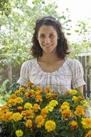 You can plant a flower bed on a slope to enhance your landscape.