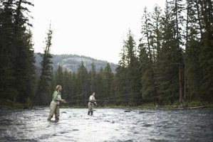 People fly fishing.