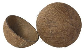 Coconut shells are decorative building blocks for craft projects.