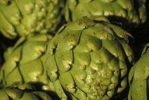Artichokes are simple to prepare and steam.