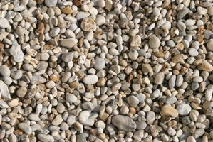 Gravel used for plants should be sterilized.