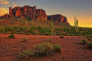 Take a hike in the Superstition Mountains along the city's eastern edge.