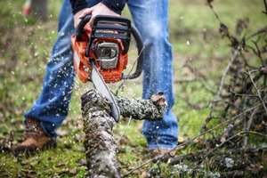 Man using chainsaw to cut tree trunk