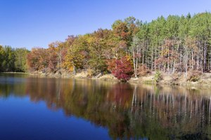 Brown County State Park features 16,000 sprawling acres of outdoor beauty and recreation.