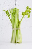 Limp celery can be rejuvenated by cold water.
