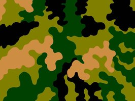 How to paint a camo pattern ehow for Camo paint template
