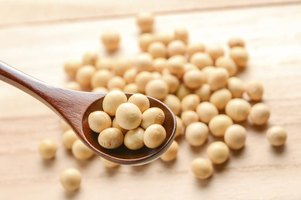 Small spoonful of soybeans